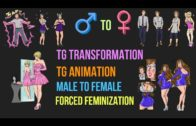 tg transformation stories by kitty marshmellow | bodyswap | animation | magic | male to female |