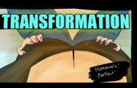 tg transformation stories | tg animation | tg tf | mtf transformation | male to female transitions.